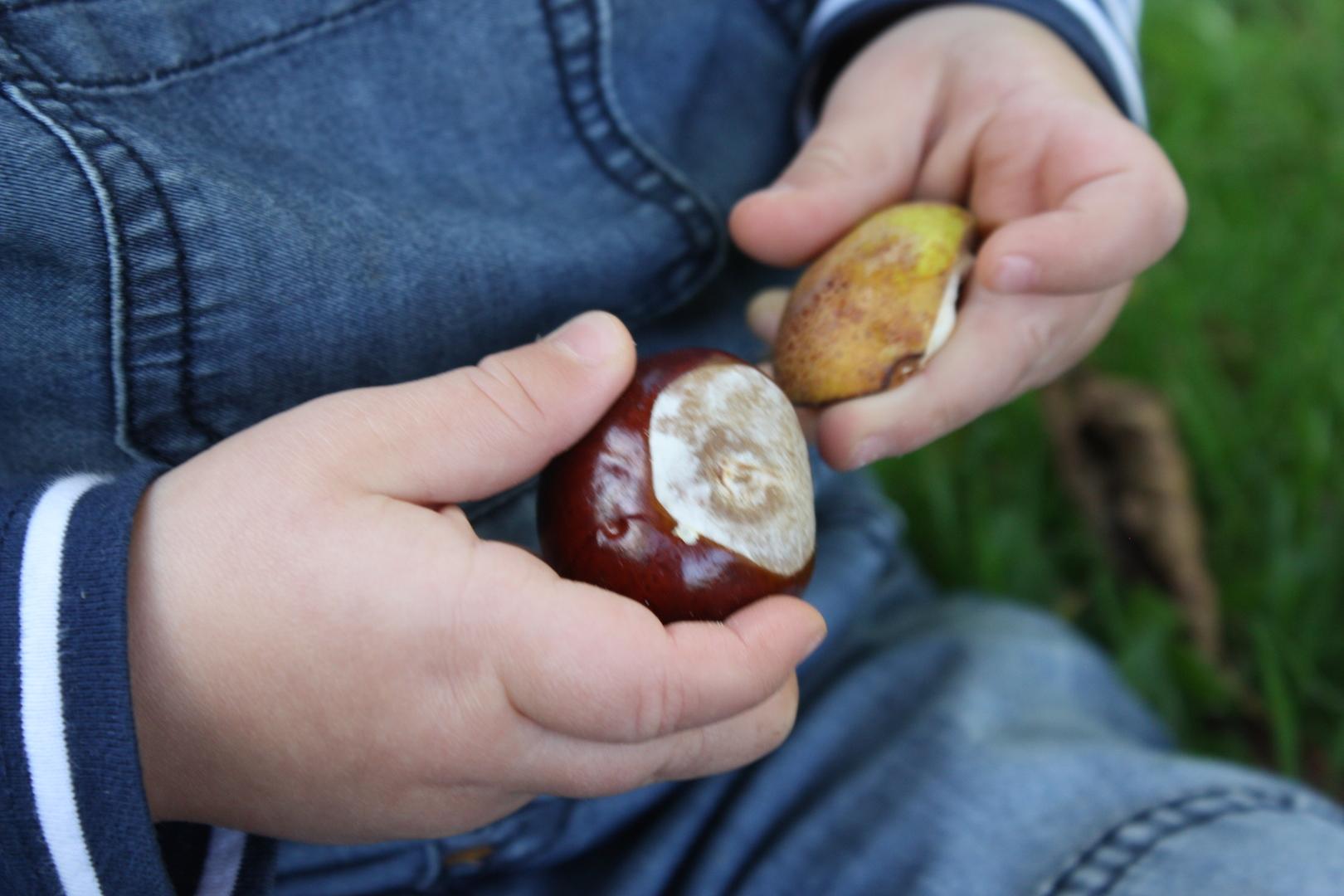 5 höstaktiviteter för små barn