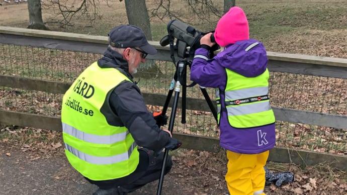 BirdLife Sverige satsar på barnen!