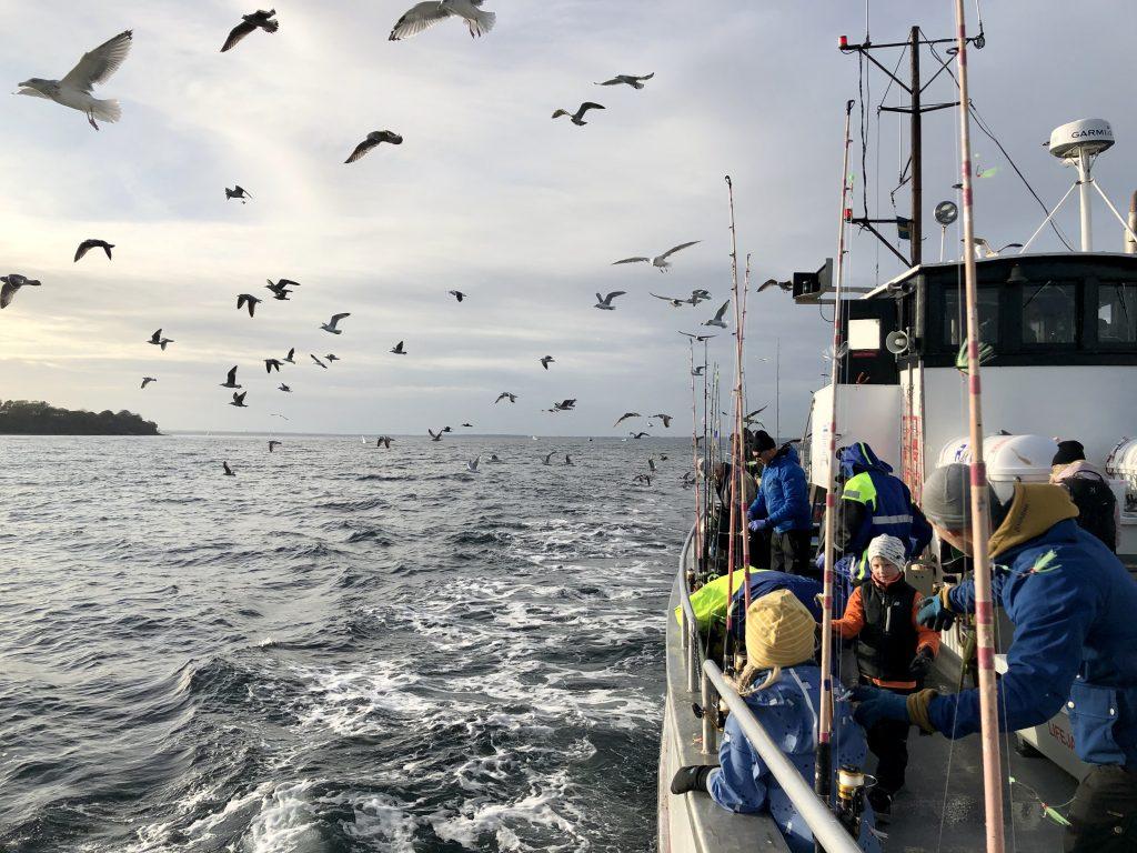 FISKEWEEKEND I LANDSKRONA